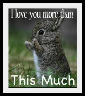 I Love You As Much As Quotes Funny : cute-love-more-than-this-much